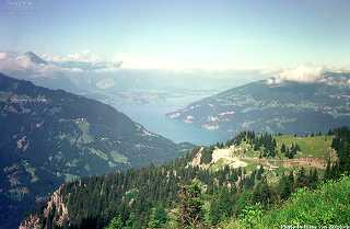 View from the top of the Oberberghorn. In the background the Vierwaldstädtersee is visible.